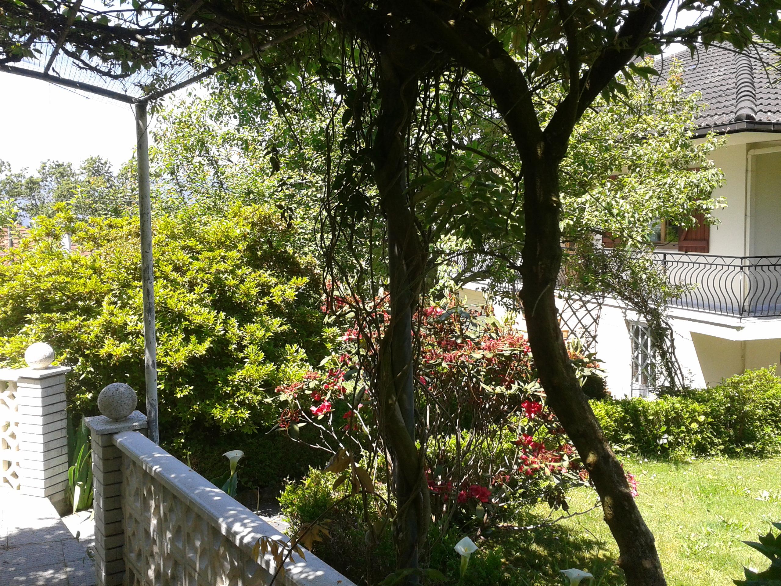 Alquiler casa rural galicia impresionante casa rural en - Alquiler casa rural galicia ...